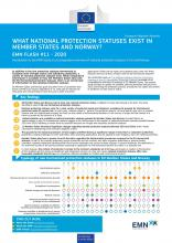 EMN Flash: What National Protection Statuses Exist in Member States and Norway?